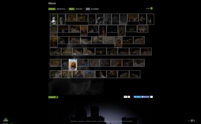 Picture3 Fotografías de Elche: Página web